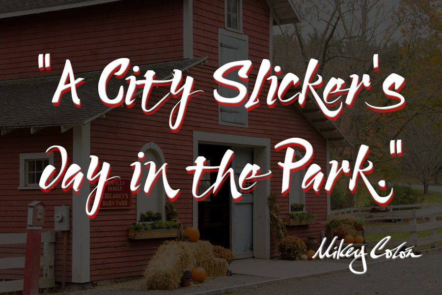 A City City Slicker's Day in the Park