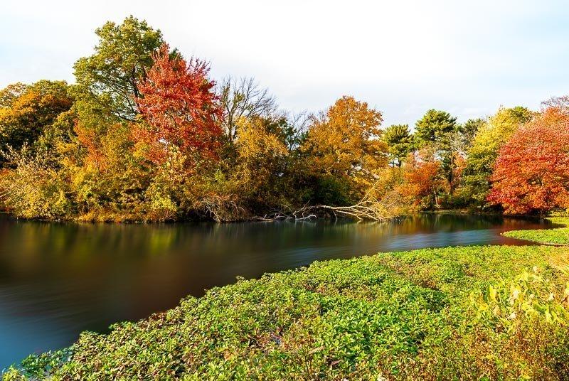 foliage autumn season Verona Park in New Jersey near montclair photography art