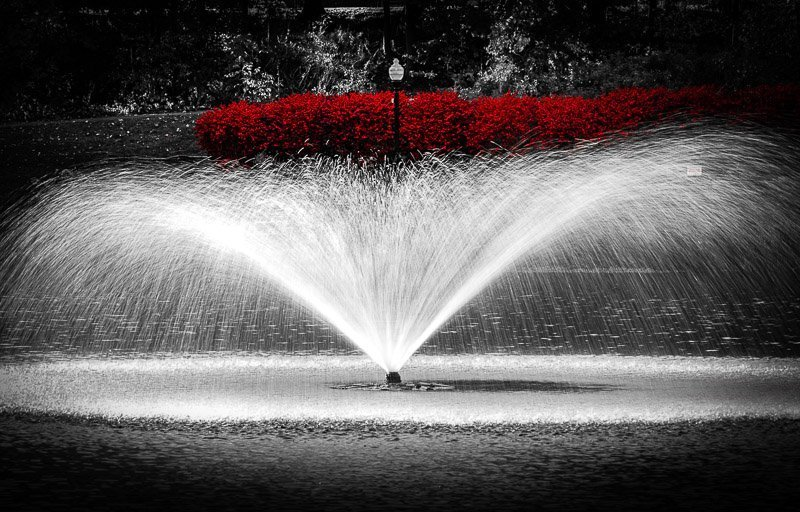 verona park near montclair nj professional photographer wall art
